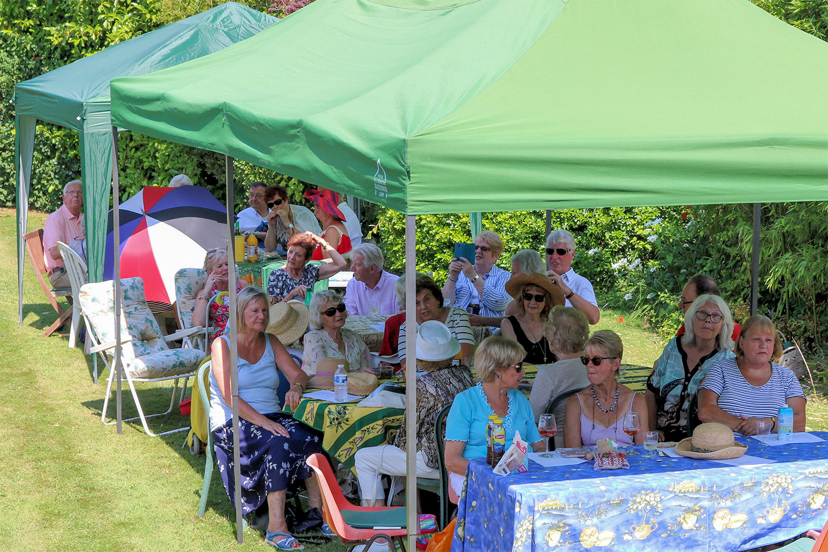 Views of the Charity Garden Party 2019